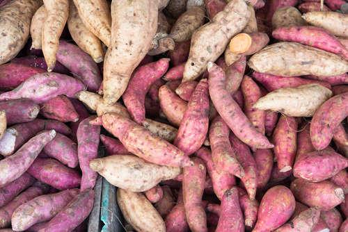 「紫芋焼酎」をご存知ですか?ワインのような味わいを楽しもう!