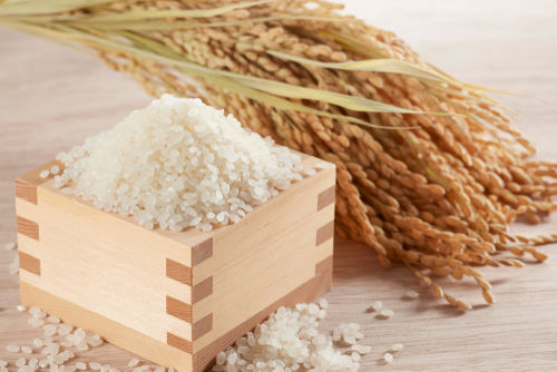 日本酒は米が原料なのにフルーティーに感じるのはなぜ?