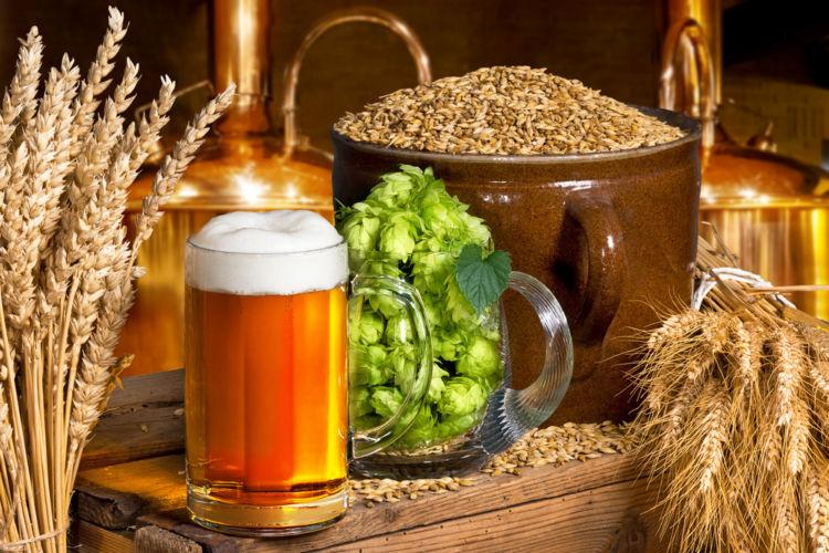 ビールの製造工程を徹底解説! 大麦がビールに変わるまで