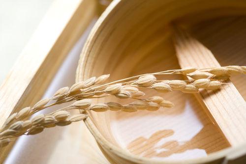 「城川郷」は地元産の原料で造られる酒