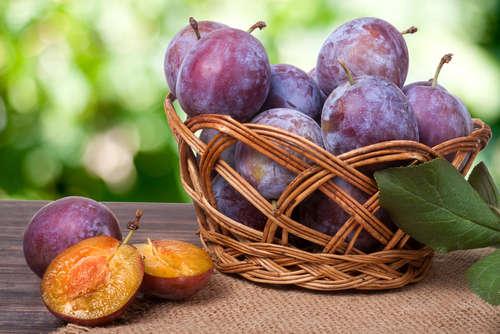 果実原料を用いたワインが魅力!秋田のワイン