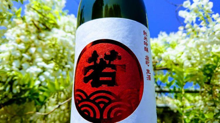 福岡の日本酒【若波(わかなみ):若波酒造】姉弟中心の5人チームで醸す旨い酒