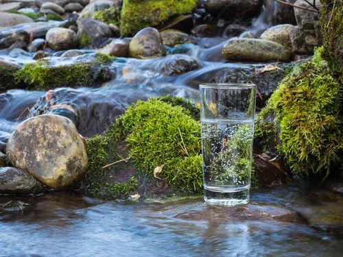 メーカーのこだわりがわかる「水」と「副原料」の役割とは?