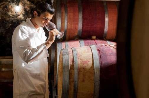 世界最古のワイン文化を持つブルガリアのワイン『ロゴダジ』の魅力