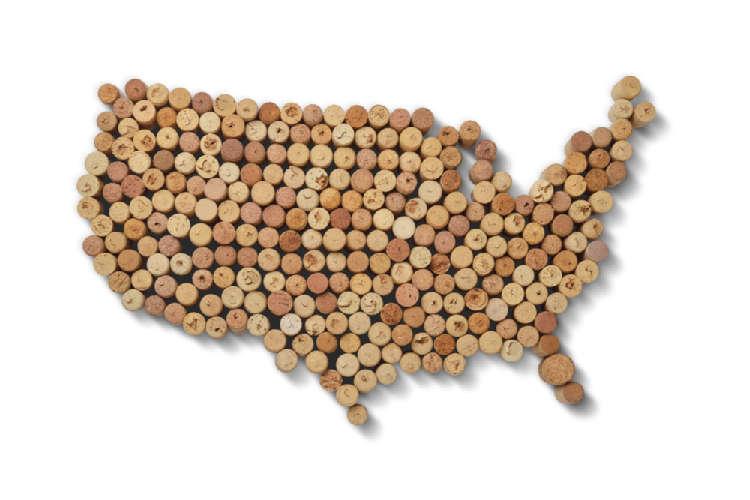 アメリカのワインをブドウから紐解く