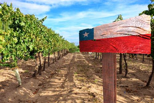 チリワインの旨さを世界に広めた「サンライズ」
