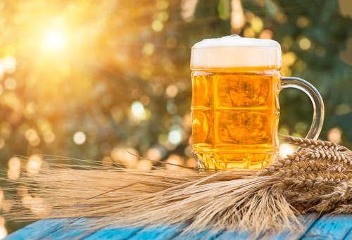 ビールの麦芽比率とおいしさの関係
