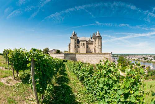 「サンセール」「プイィ・フュメ」のワインを代表に持つ「ロワール」
