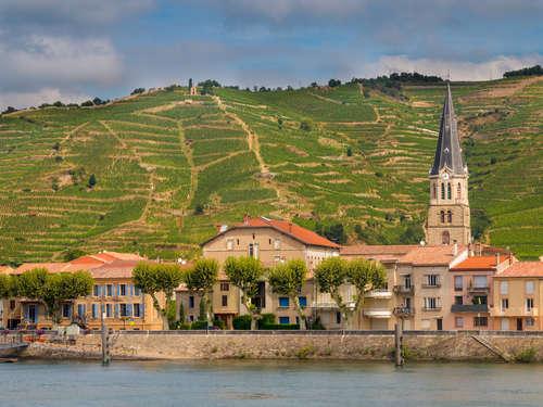 ローヌワインとは?フランスローヌ地方の南部と北部で味わいが異なります