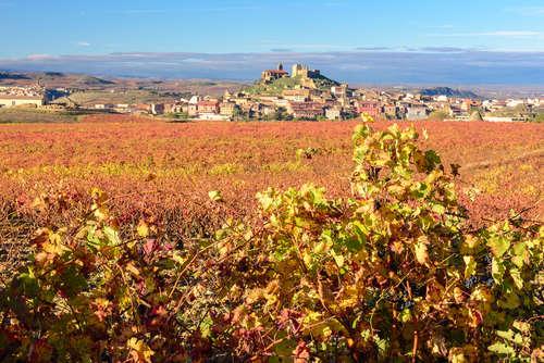 世界第3位のワイン生産国、情熱の国スペイン