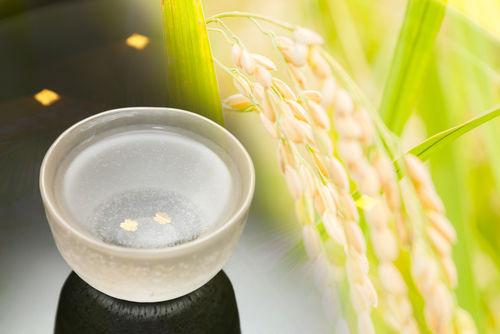 フルーティーな日本酒のすすめ!火入れを行ってないフレッシュさが人気の生酒