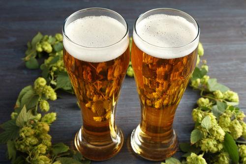 清らかな雪解け水で仕込んだクラフトビールは宮城ならではの味