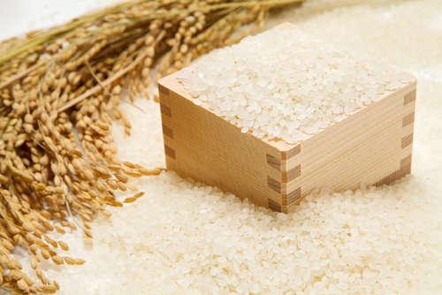 食べるお米とは違う! 酒造りに適した米「酒造好適米」って?