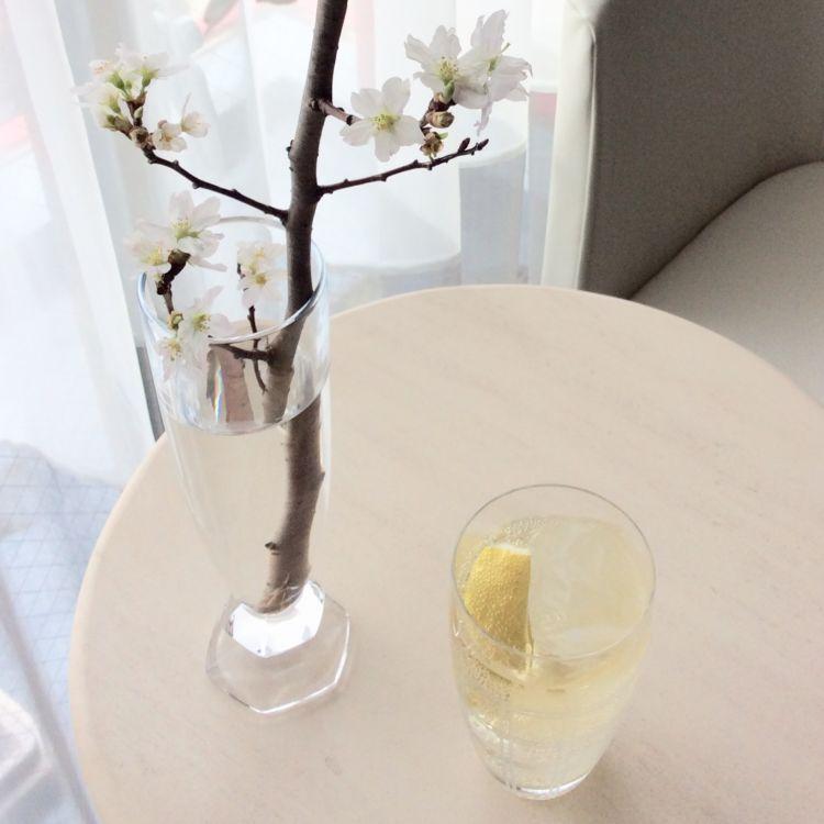 春らしい雰囲気を味わえるカクテル 「スパークリング・シャルロッカ」