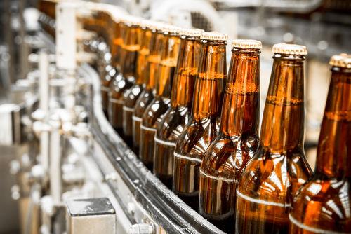 ビールを造る仕事を知って美味しいビールを飲もう!