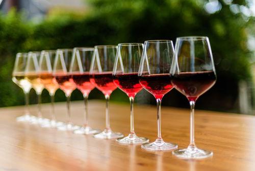 赤ワインと白ワインの異なる成分と味わいを知ろう!