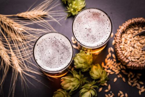 ビールの原料、大麦とホップの種類からビアスタイルを考える