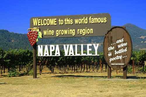 アメリカ、オーストラリア、チリ、南アフリカ…。ニューワールドのワインをたのしむ