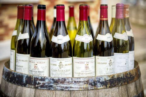 フランスの2大ワインの産地を知る【ブルゴーニュ】