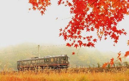 """日本海を望む """"ほろ酔い""""列車の旅! 地酒や地ワインを片手に景色をたのしむ"""