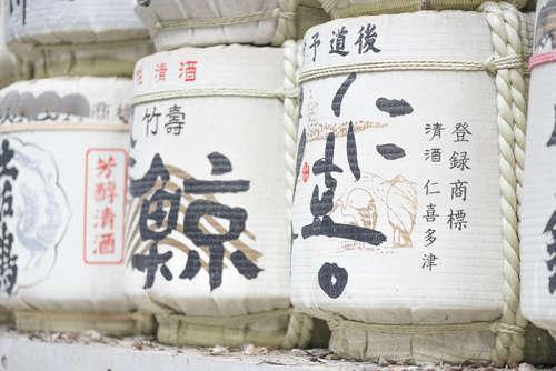 日本酒づくりの立役者、酵母を学ぶ