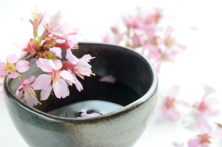 山梨の日本酒【青煌(せいこう)】花酵母で日本酒業界に煌めきを