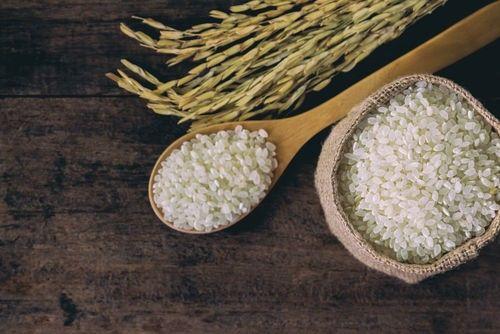 米焼酎の魅力と、飲んでおきたいおすすめの米焼酎