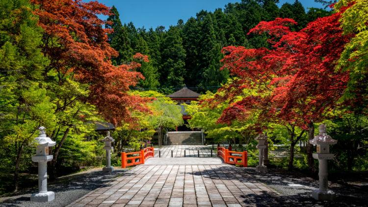 和歌山に行って飲んでみたい! おすすめの日本酒(地酒)【近畿編】