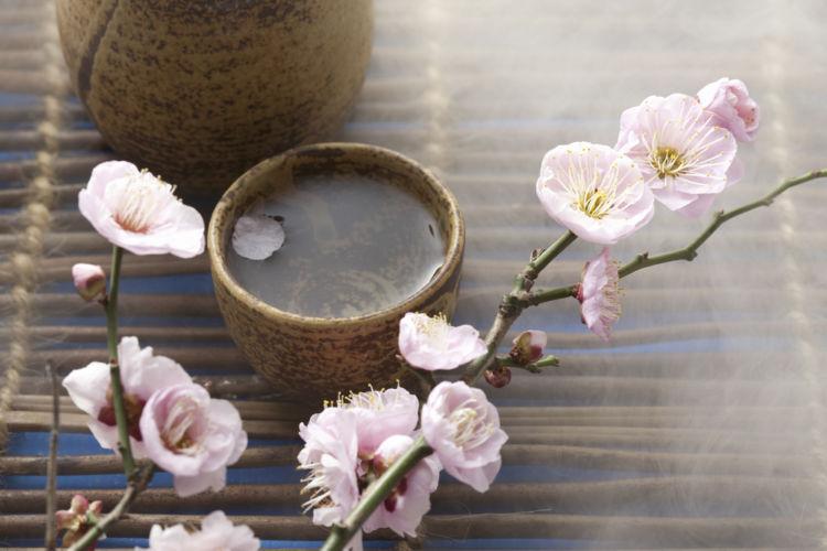 静岡の日本酒【花の舞(はなのまい)】食事に合うお酒をめざした逸品