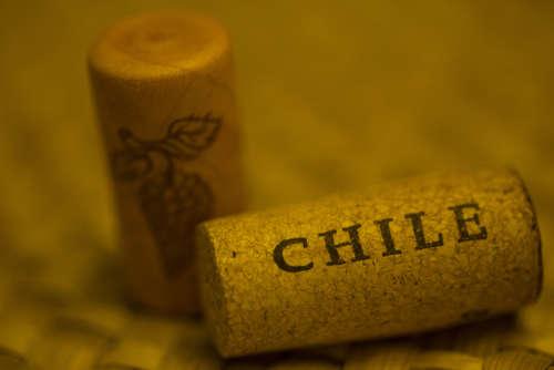 リーズナブルで高品質な南アメリカのチリワインを楽しむ!