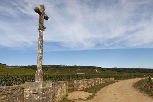 世界一高級なワイン「ロマネコンティ」の華やかな歴史