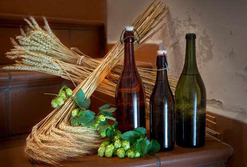 ビールの個性を決める3つの原料と酵母。個性豊かなビールを試そう!