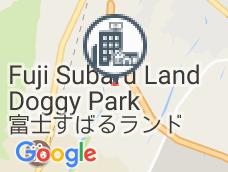 Evergreen Fuji