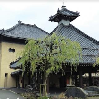 Shirosaki Onsen Sato no yu 圖片2