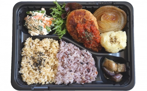 Japanese Soy Veggie Meat Hamburg Steak Bento