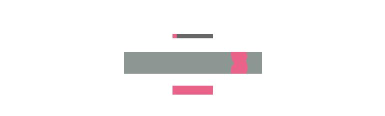 About TDSE 事業内容