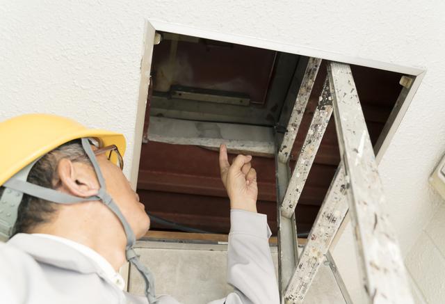 屋根裏の目視調査