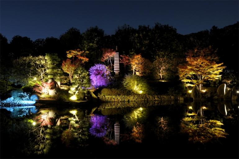 Illumination at Mejiro Garden