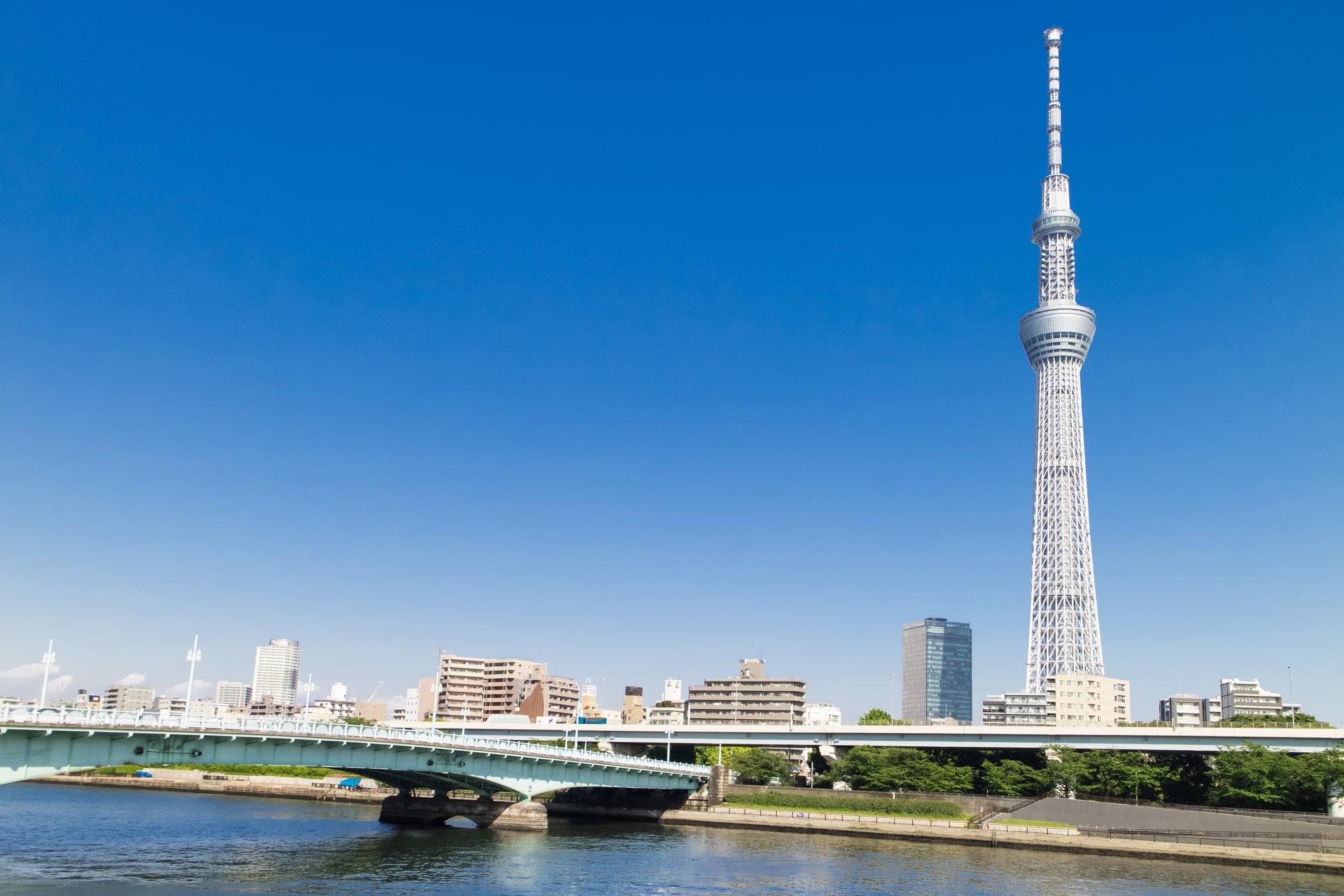 Tokyo Sky Tree and Mont Fuji