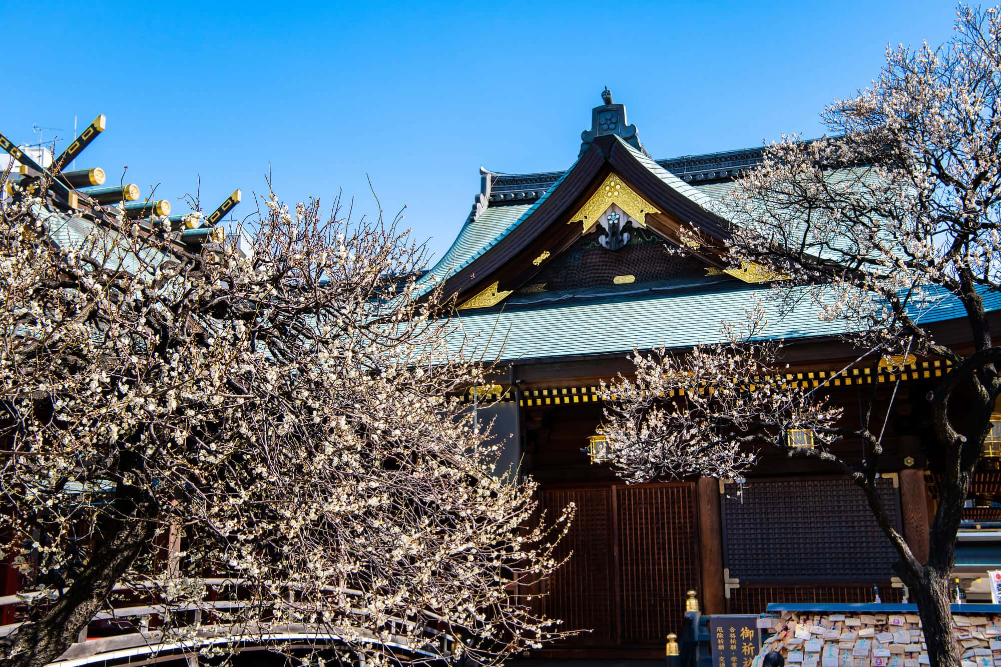 天神 初詣 湯島 湯島天神で初詣、旧岩崎邸庭園を散策、ランチ
