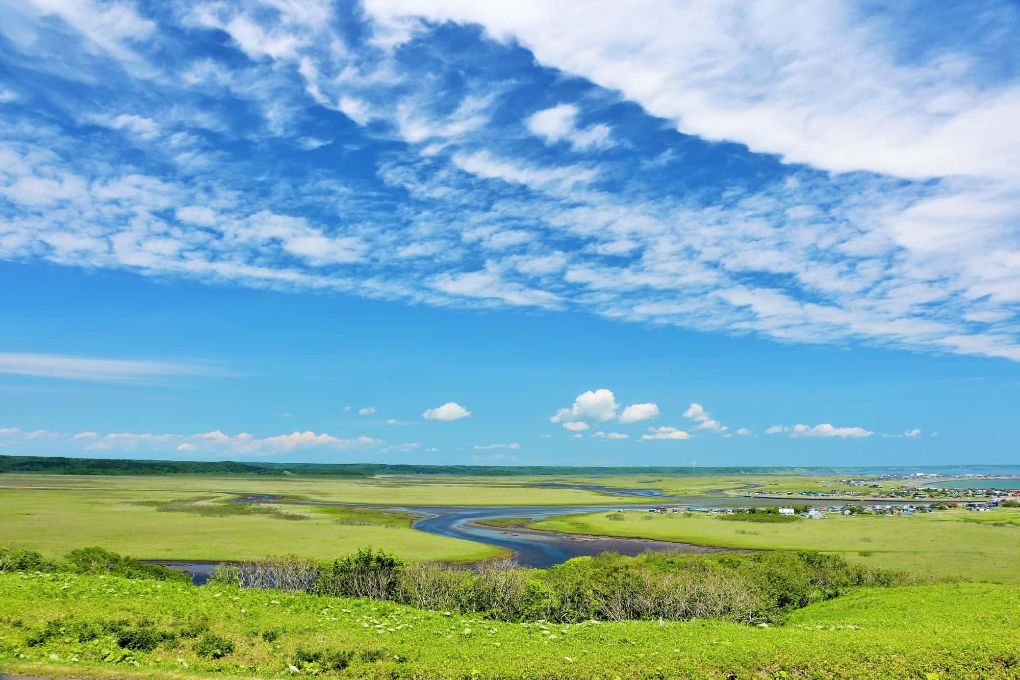 Kiritappu wetlands on a sunny day