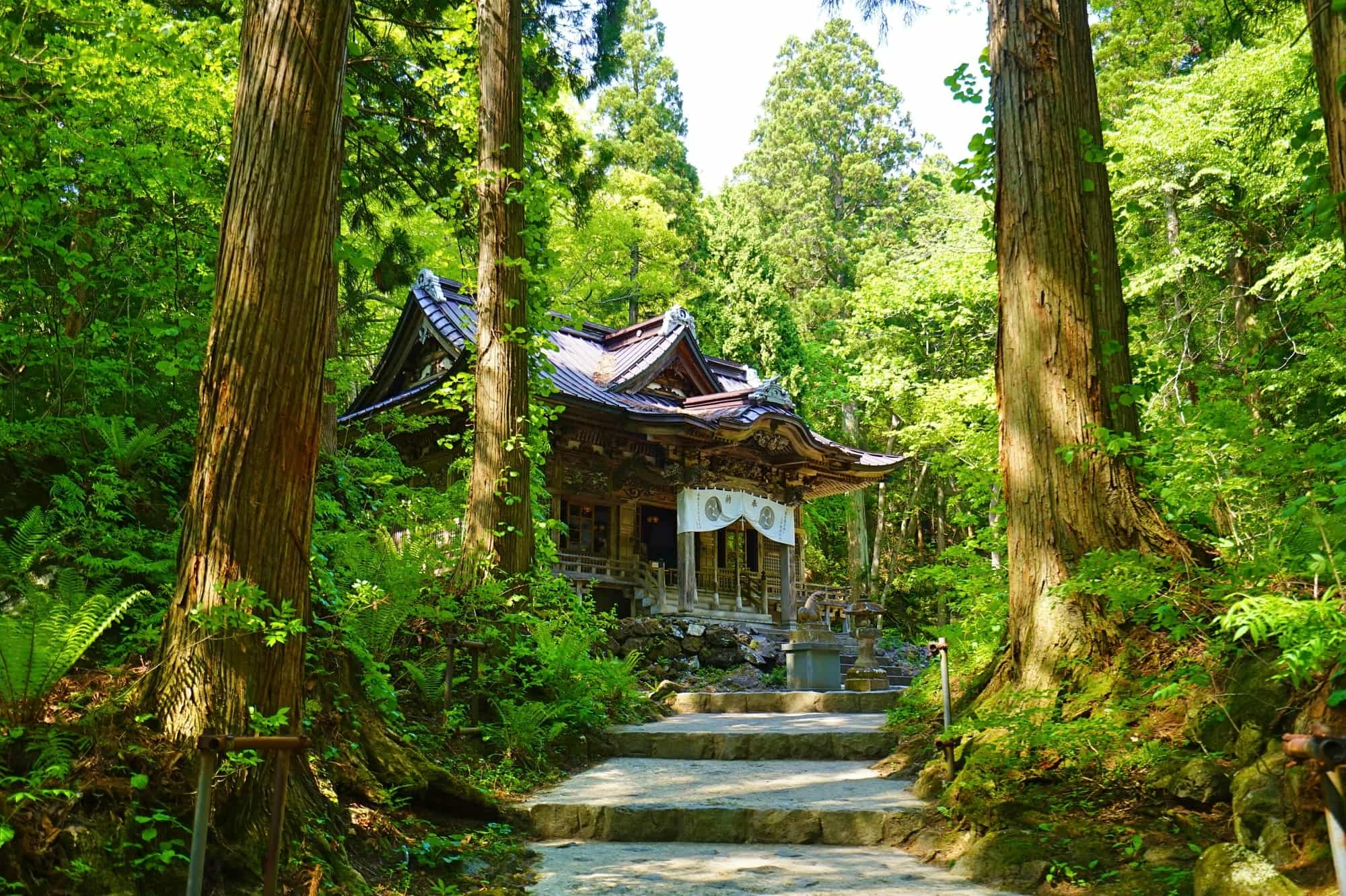 Towada Shrine surrounded by trees in a forest
