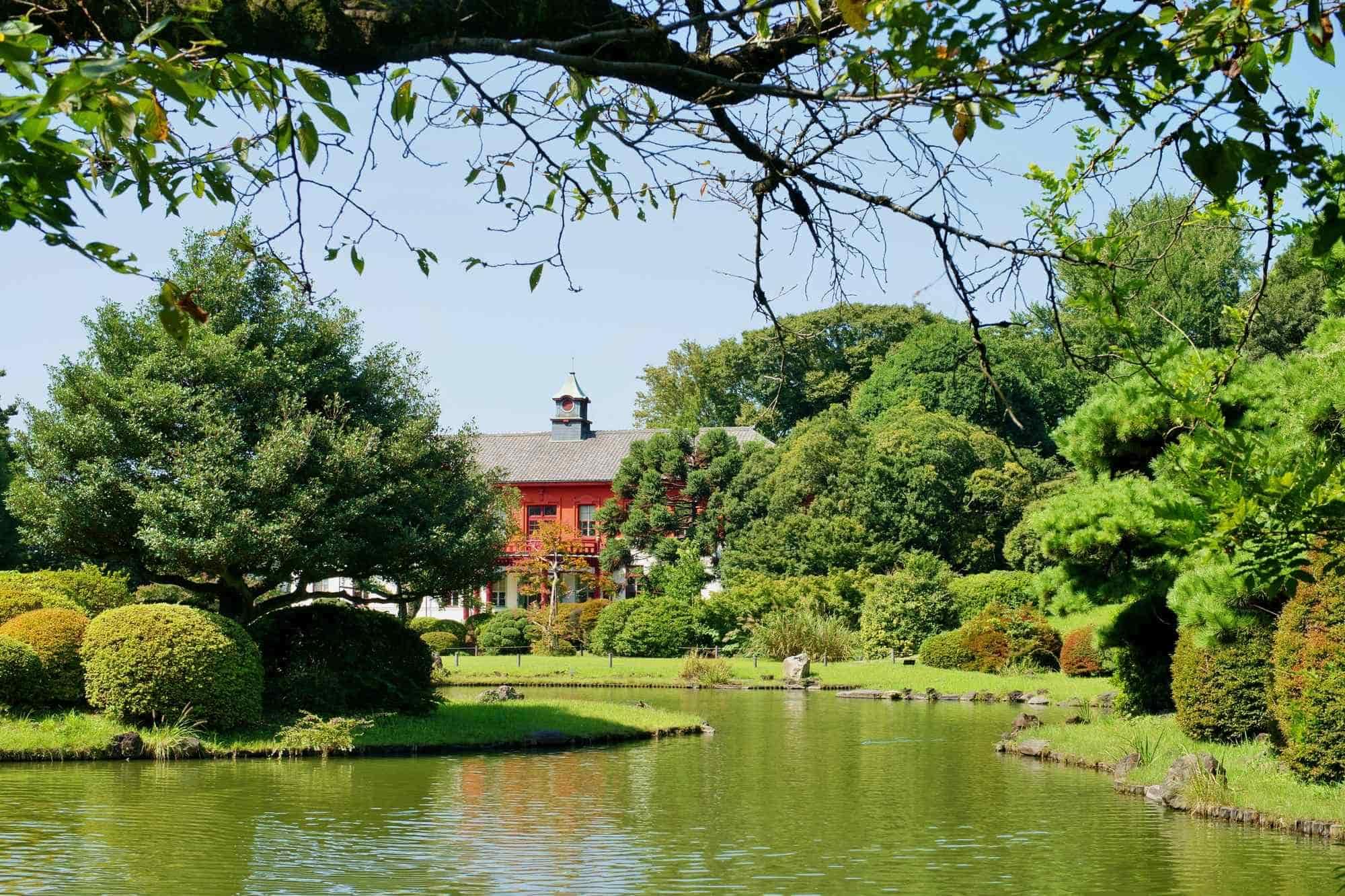 自然丰富的小石川植物园