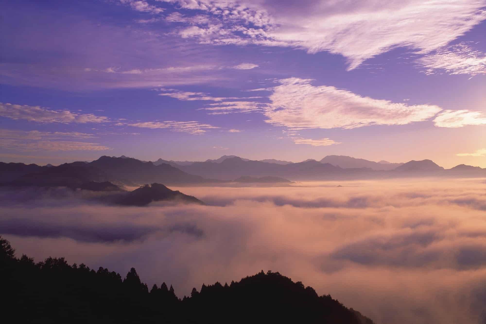 구니미가오카에서 보이는 이른아침의 운해