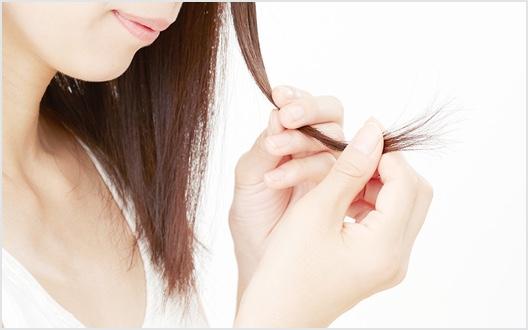 枝毛・切れ毛、髪の傷み(痛み)