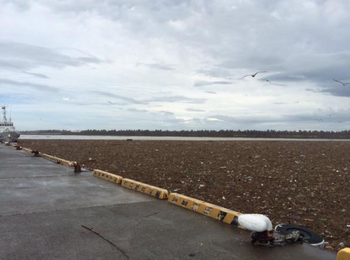 鬼怒川堤防決壊の影響で、銚子港が「ゴミ」の山になっていた(画像あり)
