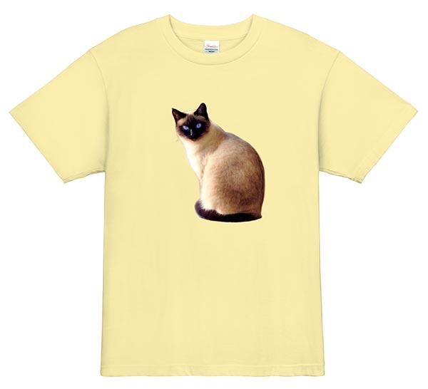 猫の写真をデザイン