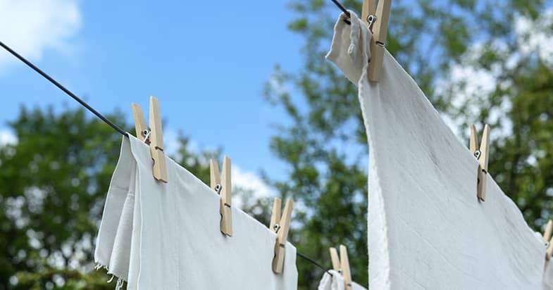 洗濯でダニを退治できる?