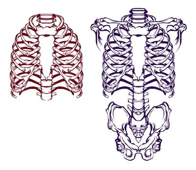 仮装に使えるスケルトン(骸骨)スタンプ