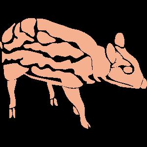 動物・生き物ST-2774